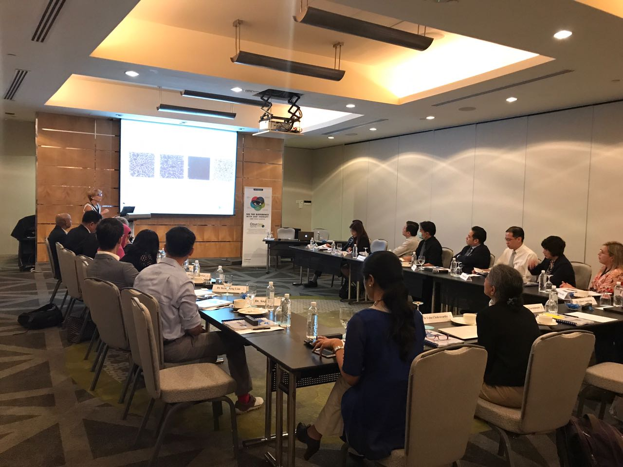 Professor Anat Lowenstein from Israel speaking to participants at the ARIA IV Experts Meeting at the Pan Pacific on 9 June 2017 in Singapore.