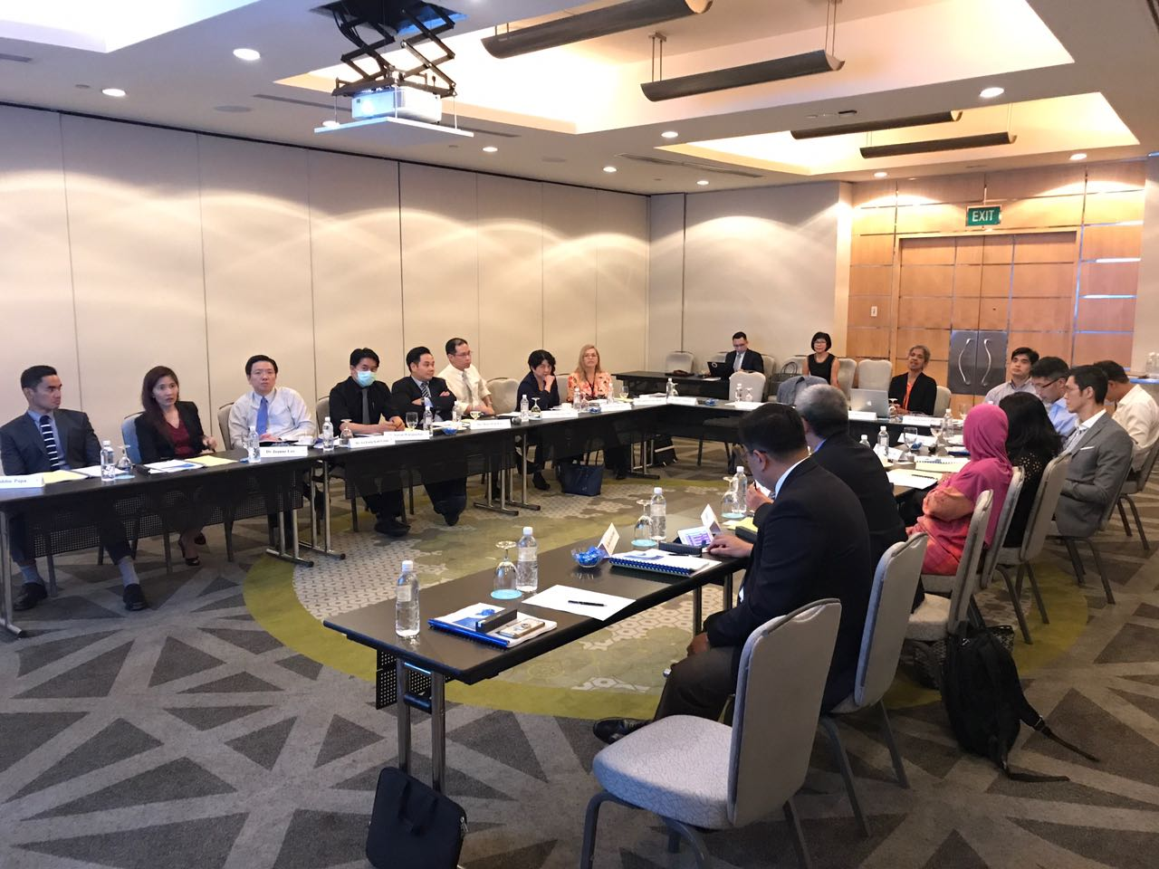 Participants from around the region participating in a discussion at the ARIA IV Experts Meeting at the Pan Pacific on 9 June 2017 in Singapore.